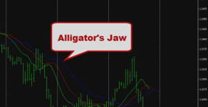 Alligator Indicator